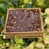 Tarte chocolat sarrasin de Nicolas Paciello