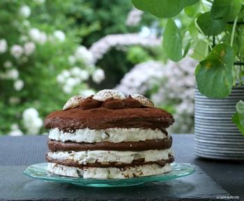meringue_chocolat7.JPG