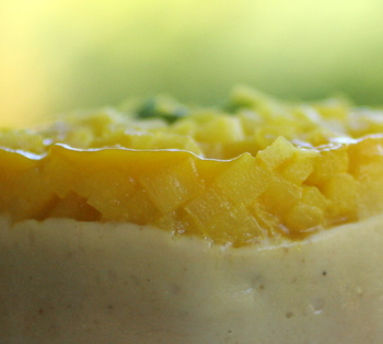 marrons_ananas_passion_entremets__2_.JPG