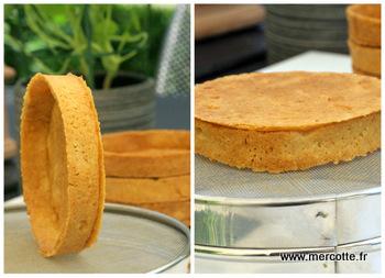Simplissime tarte au citron la cuisine de mercotte macarons verrines et chocolat - Fond de tarte palet breton ...