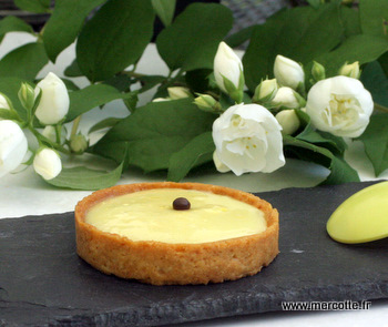 Simplissime Tarte Au Citron La Cuisine De Mercotte Macarons
