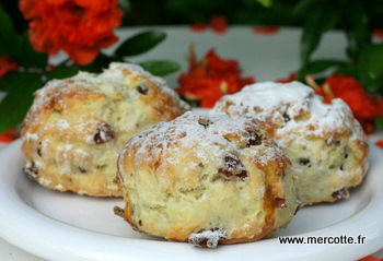 scones_cranberries__2_.jpg