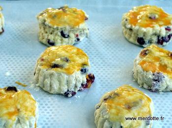 scones_cranberries__3_.jpg
