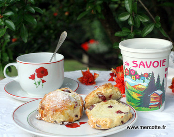 scones_cranberries__5_.jpg