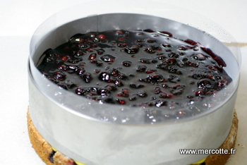 entremets_cassis_passion.JPG