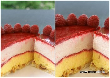 Recette buche fruit rouge mercotte