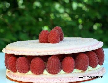 Macaron Framboise King Size Comme Un Gateau La Cuisine De