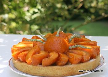tarte abricots rhubarbe le mariage des acidul s et toujours philippe conticini la cuisine de. Black Bedroom Furniture Sets. Home Design Ideas