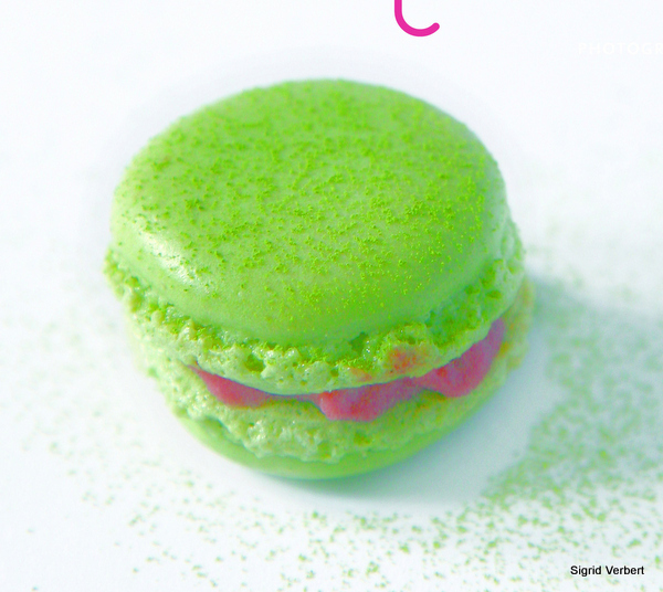 Premi__re_de_couv____Solution_macaron.jpg