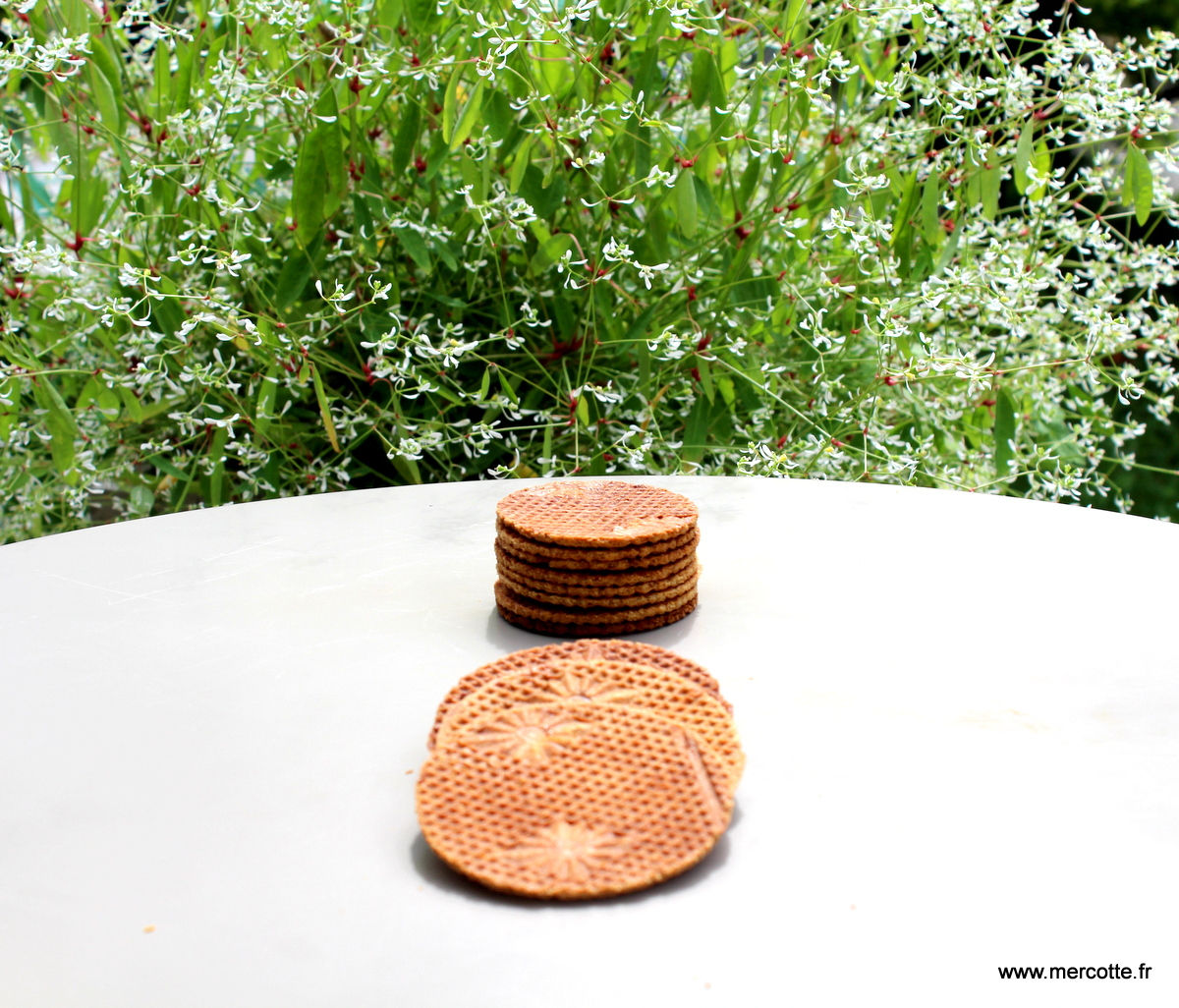 Bricelets ou gaufres sèches : la récré du dimanche … – La